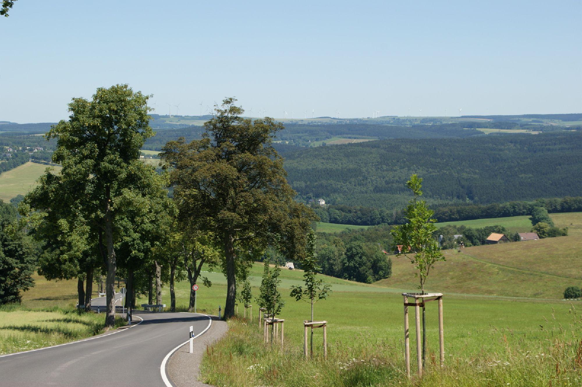 Straße nach Sorgau