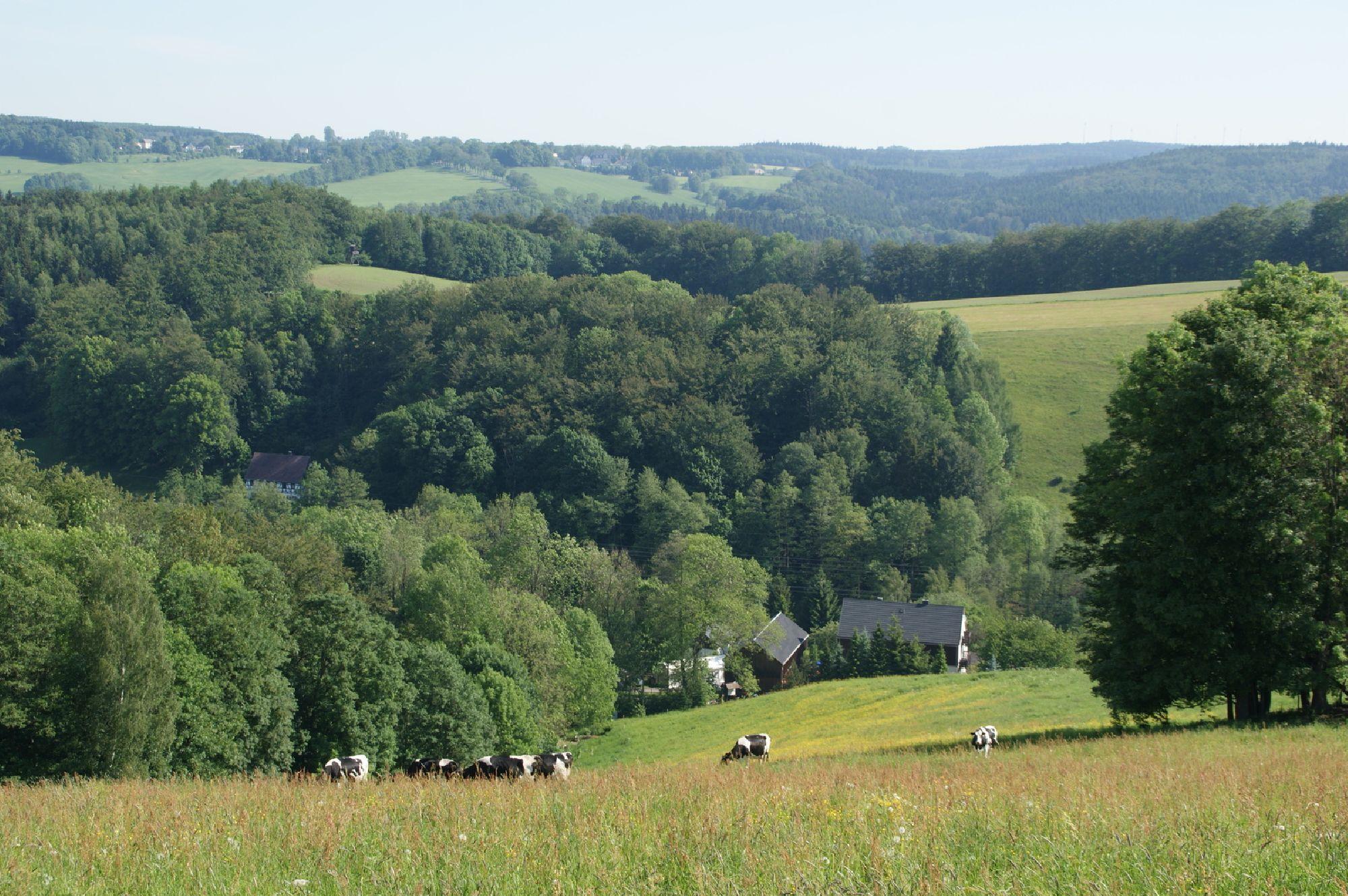 Landschaft von Sorgau